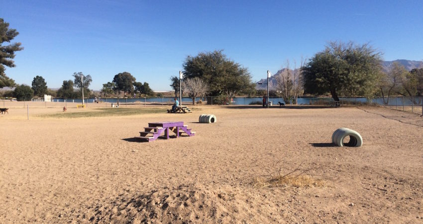 Arizona Dog Parks